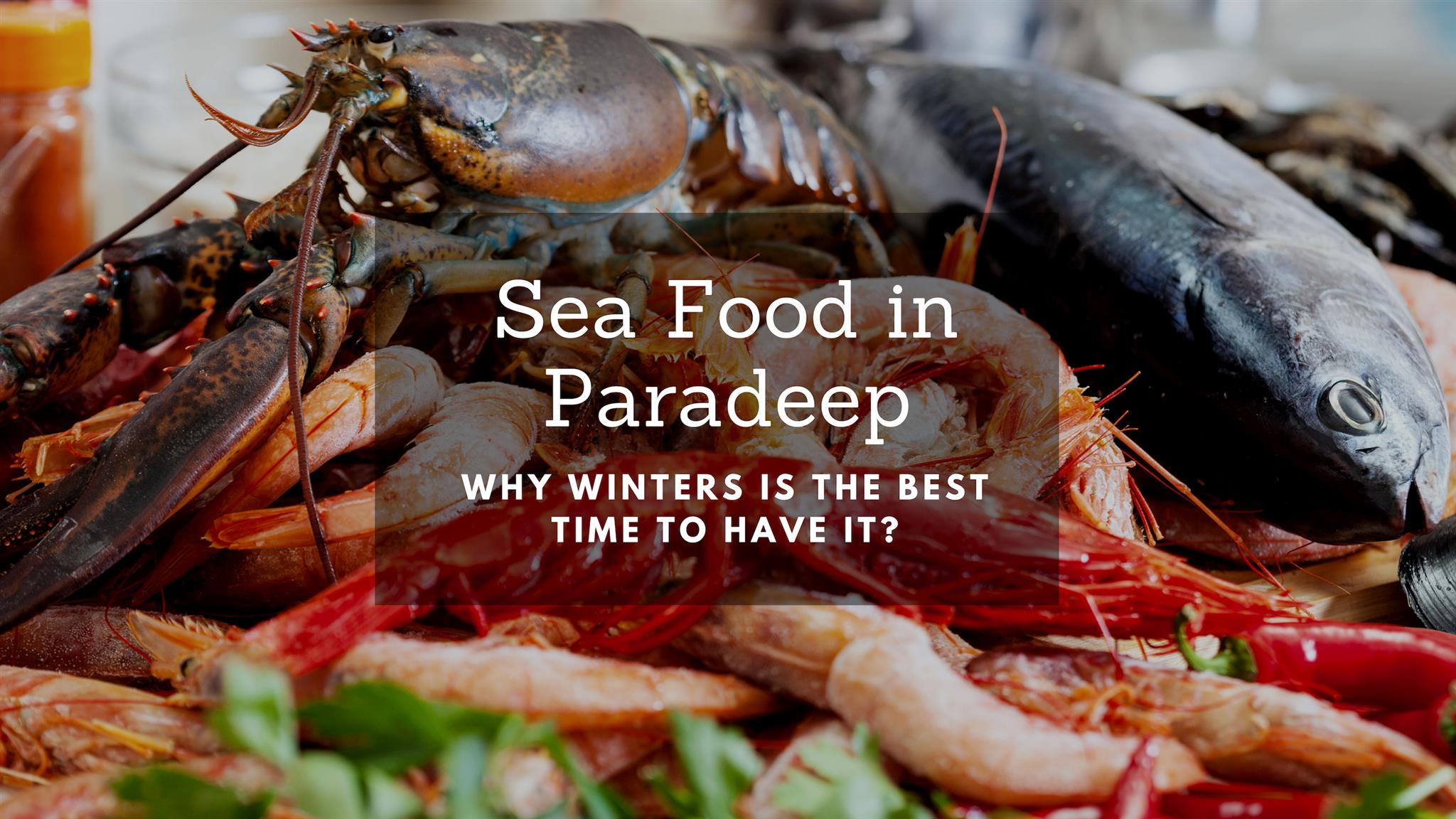Why Winters is the Best Time to Have Sea Food in Paradeep?