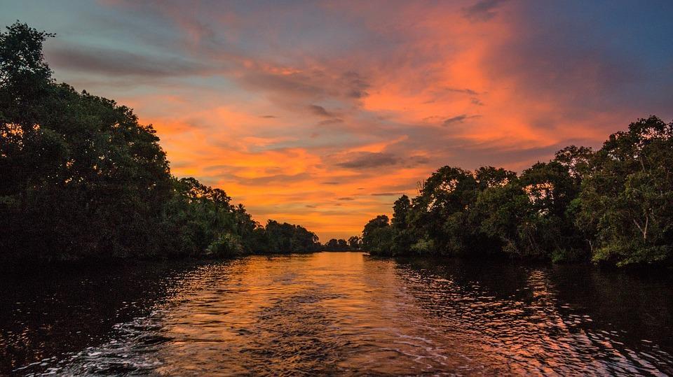 Sunset in Mangroves